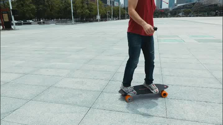 Free shipping to US electric skateboard with 600w*2 dual motor