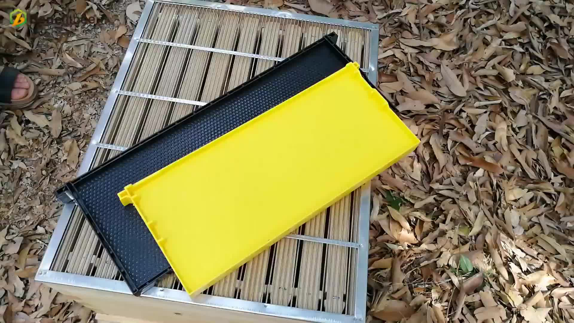 beekeeping equipment bee Hive frame with plastic comb foundation