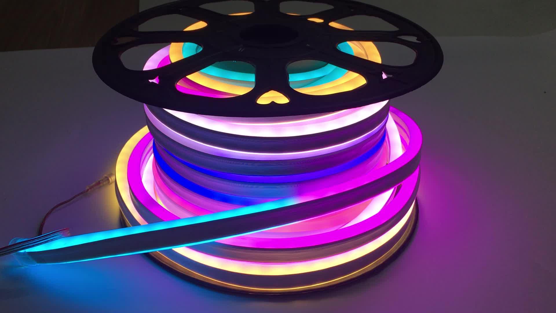 DC12V/24V 5050 RGB 60Pixel Digital Silicone Flat Neon Lamp