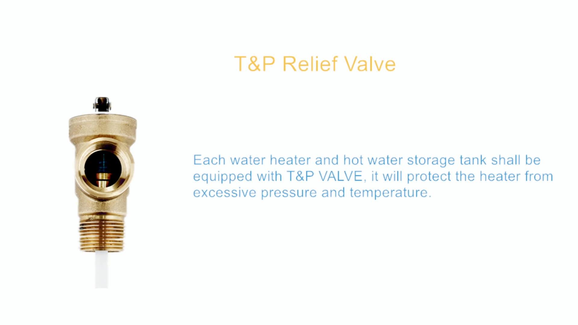 SMLG Temperature & Pressure Relief Valves