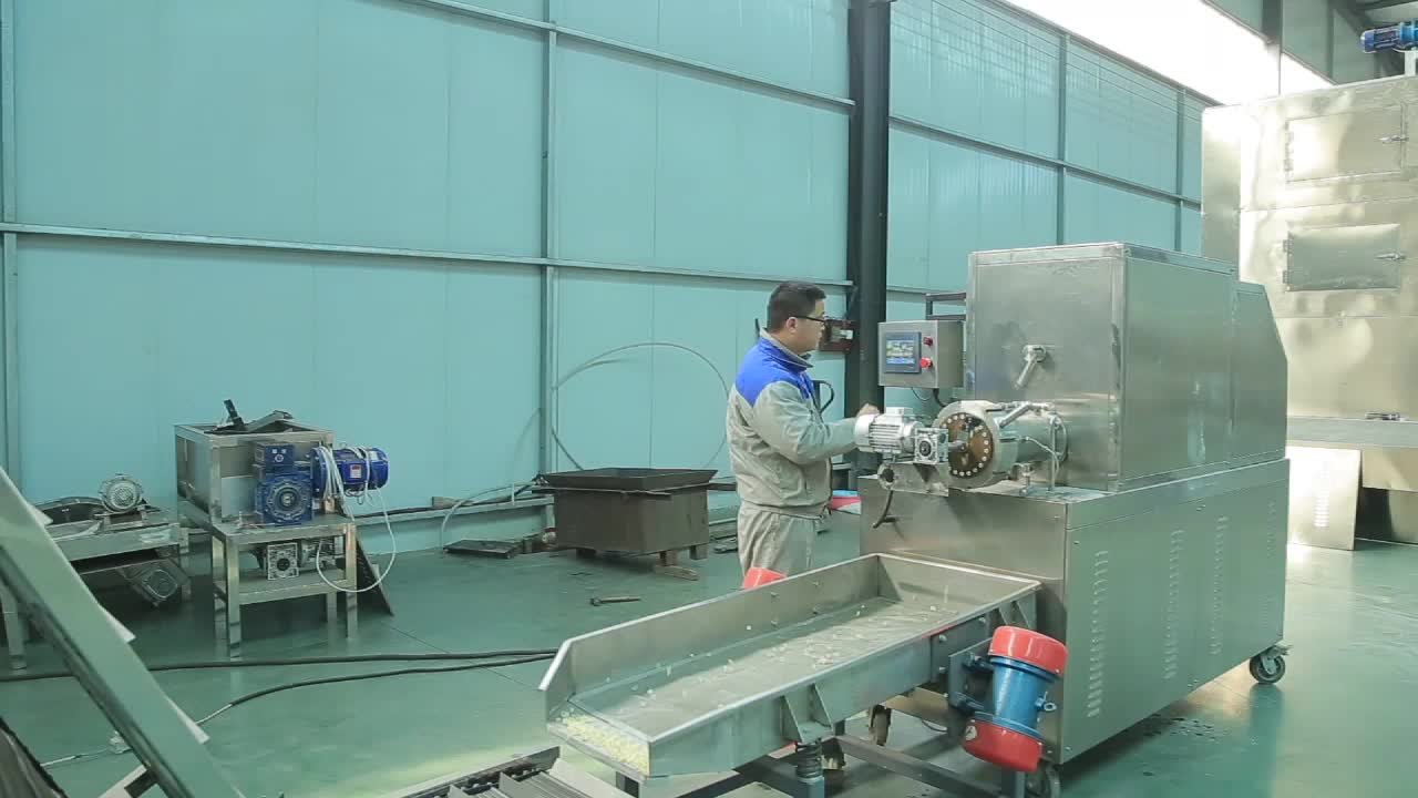 CE Approved Factory Price Pasta making machine/Pasta production line/Macaroni