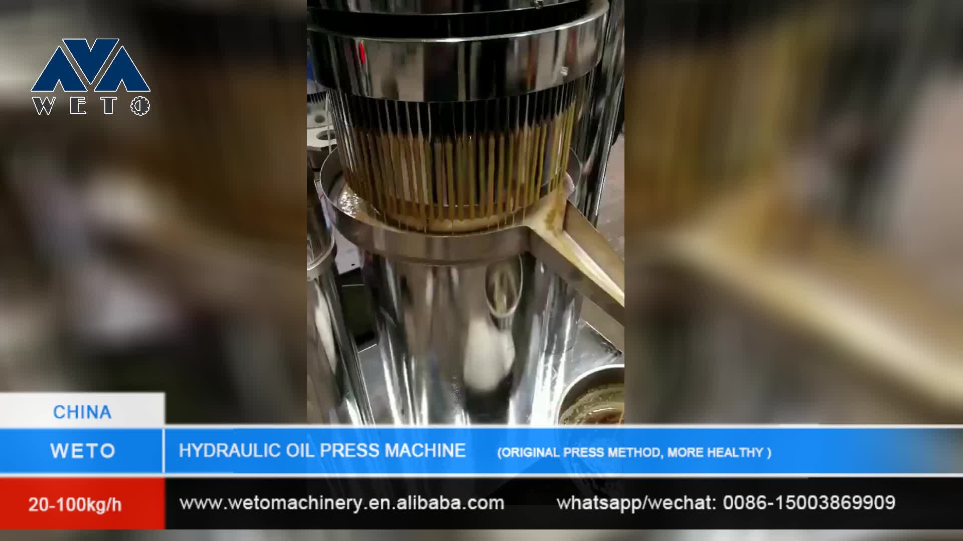 Stainless steel material 6YY-230 hydraulic oil extraction machineoilseed presshydraulic press for vegetable seed