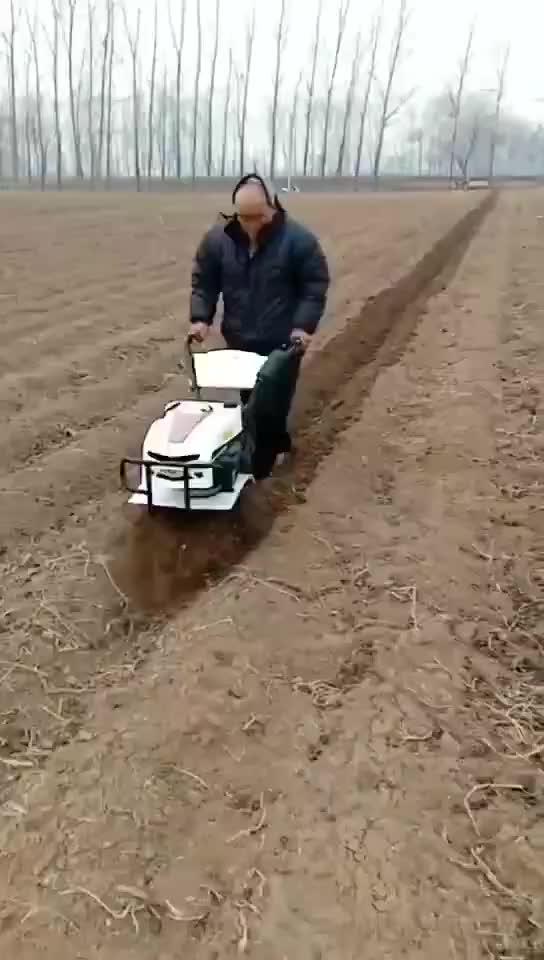 Mini cultivador Jardim Gasolina Trator Agrícola Rotativo Preço Paddy Agricultura Máquina De Mão Chinês Andando Pequeno Leme Poder