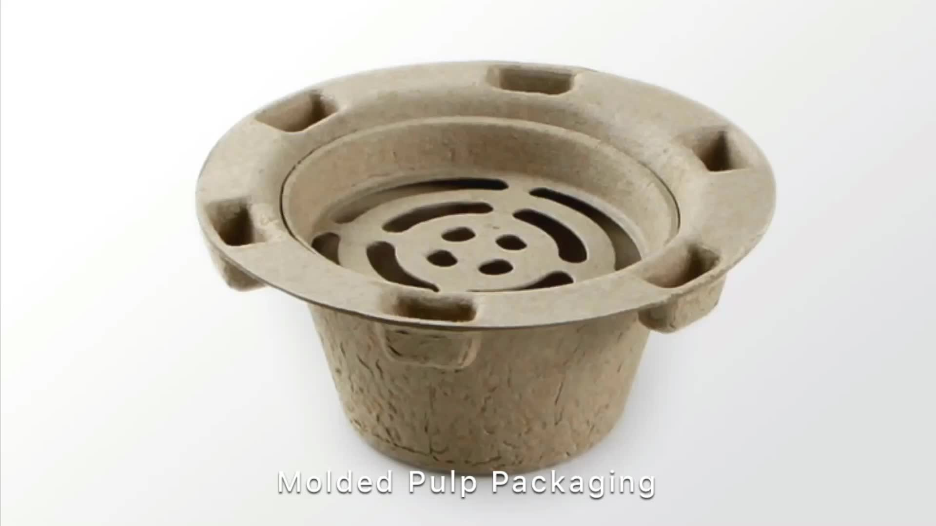 Molded Pulp Biodegradable & Disposable Tray Packaging