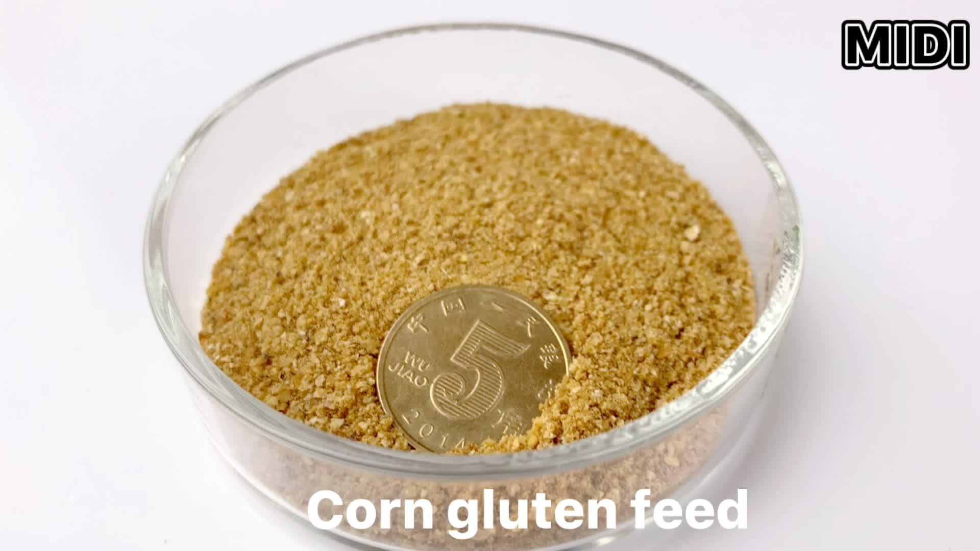 High Quality Corn gluten meal Low Price in China