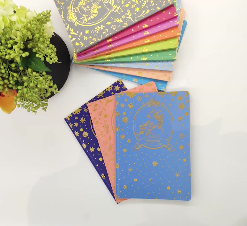 2020 esercizio notebook Holi costellazione unico riviste/12 colori foglio di copertura PP/fsc taccuino di carta all'ingrosso
