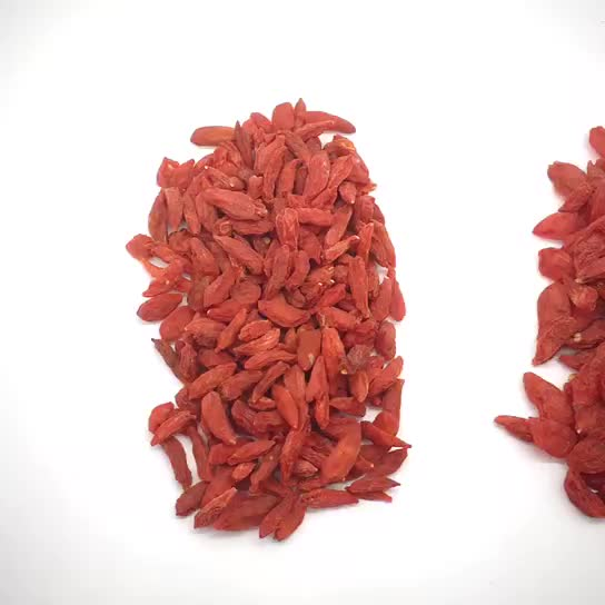 Hot Sale Natural Bulk Goji Berries Dried Bulk Goji Berry Dried Goji Berry