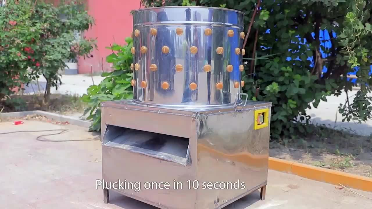 Poultry Defeathering Machine Chicken Plucker