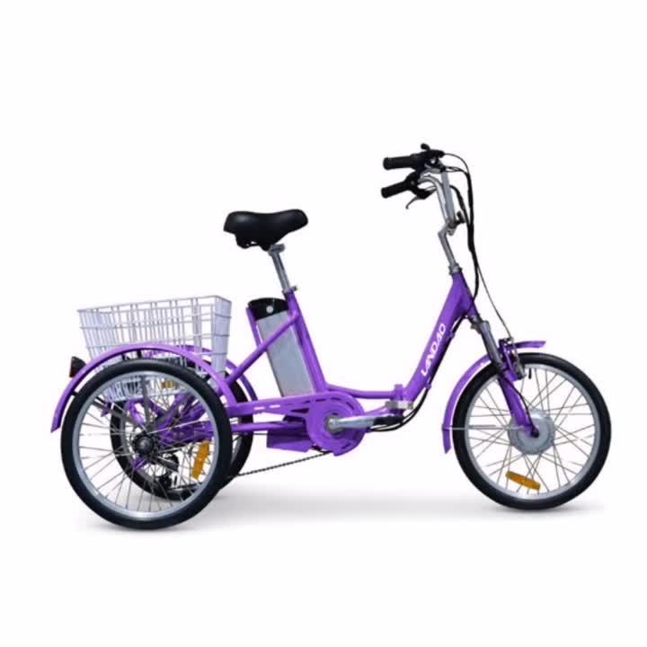 Triciclo elettrico scooter elettrico cargo bike anziani triciclo elettrico 1000W auto per il tempo libero triciclo elettrico OEM landao