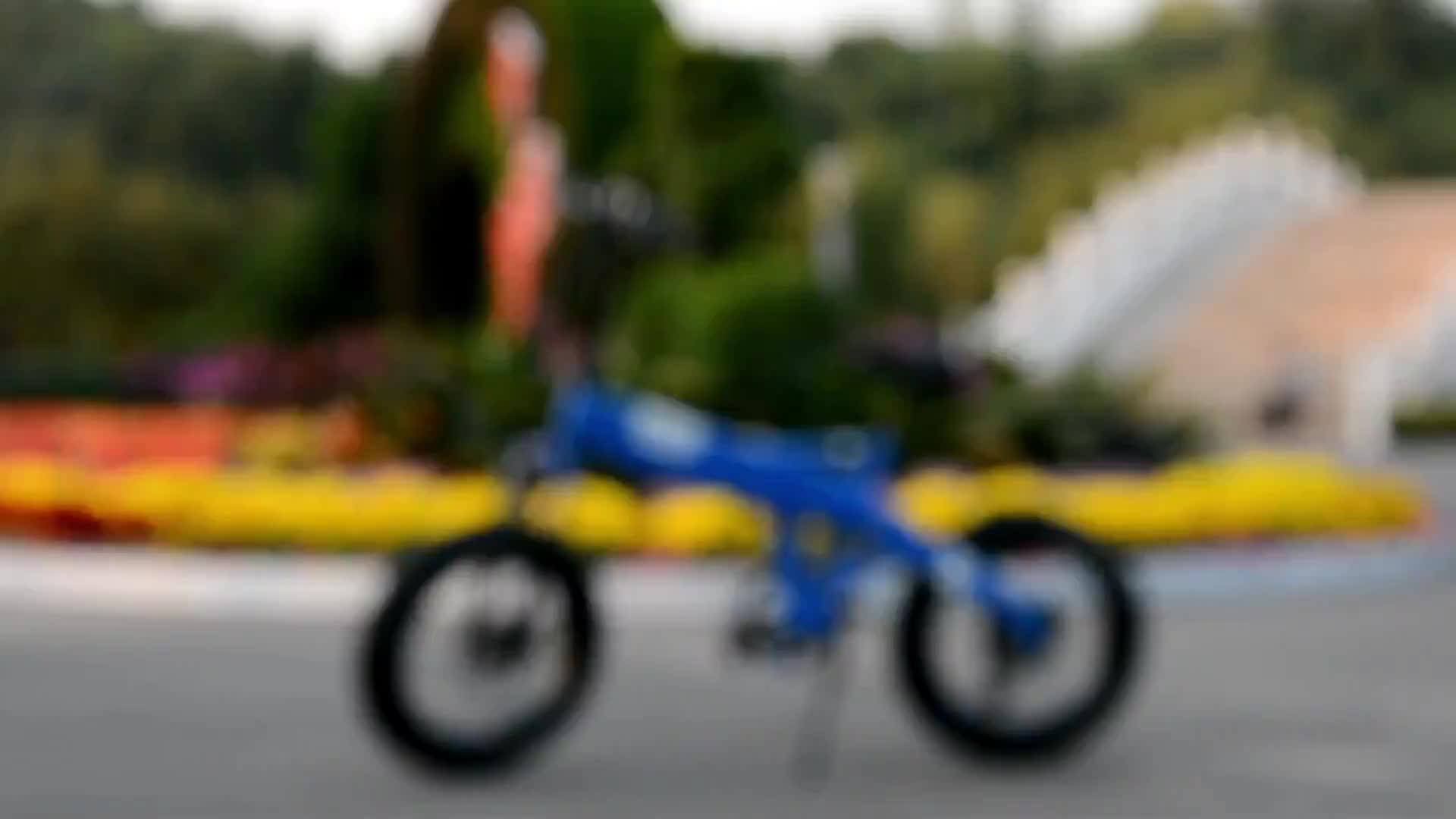2020 मॉडल लोकप्रिय वसा टायर foldable बर्फ अनुकूलित 250 W/500 W/750 W ई-बाइक बिजली साइकिल