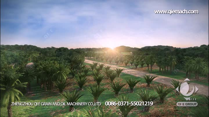 Palm Oil Mill In Malaysia and palm kernel oil refining plant