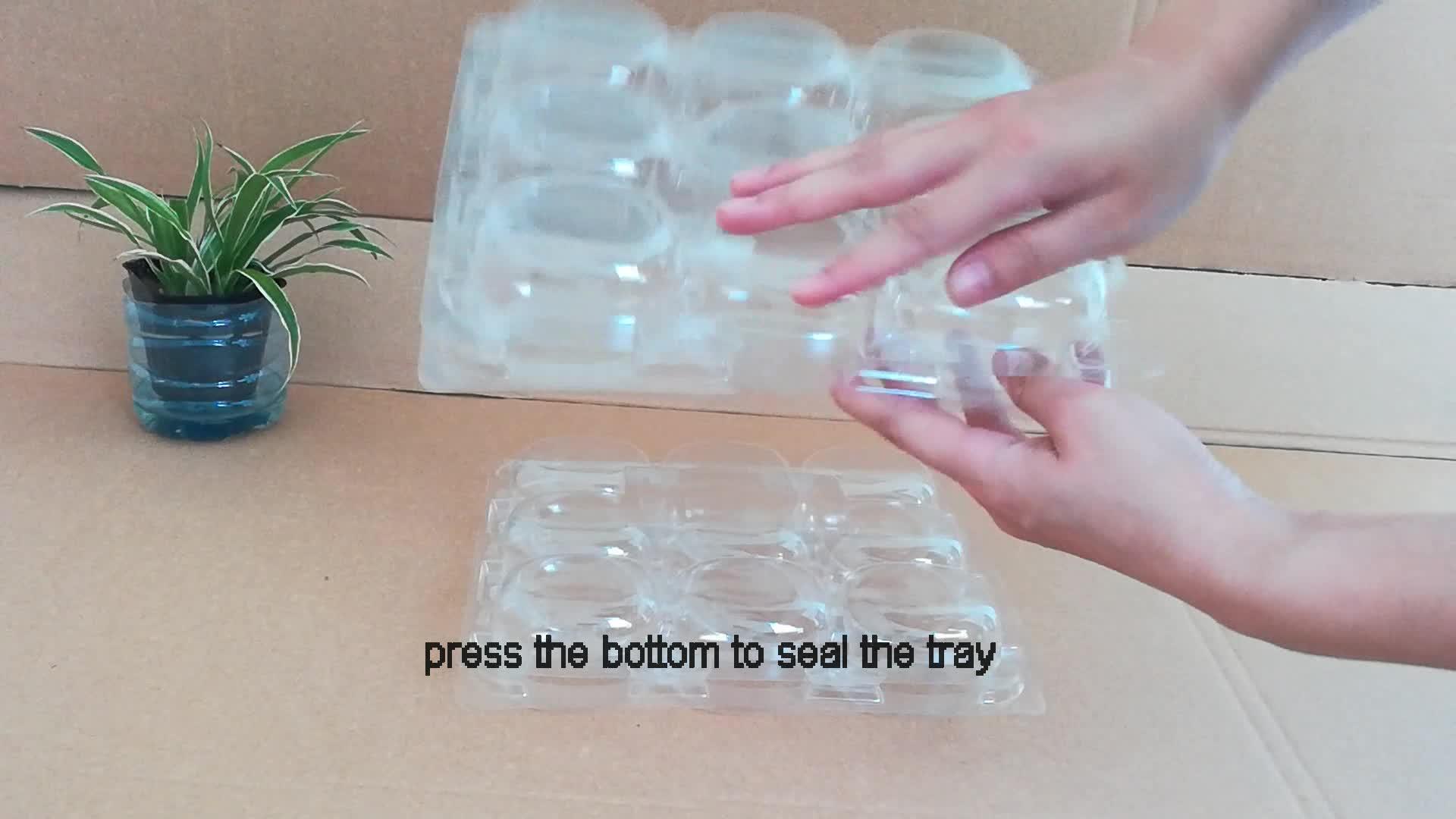Einweg biologisch abbaubar Blister lebensmittel Klar PET kunststoff Frische harte gemüse fach und obst verpackung box/mushroom tray