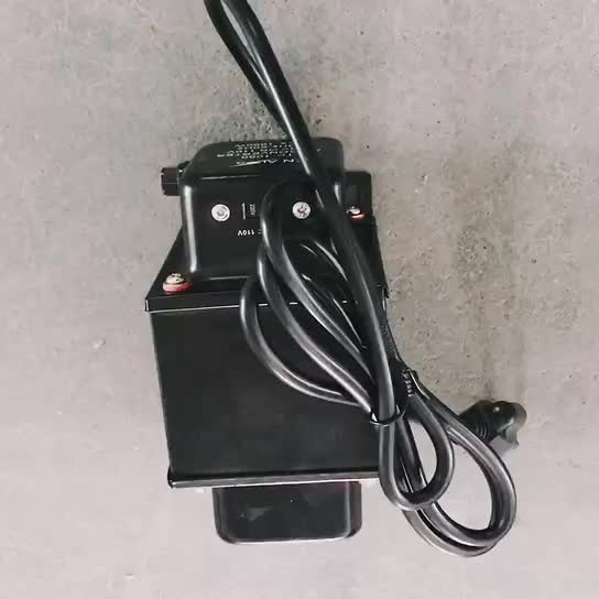 TC-1000 Full Power Step Up And Down Voltage Converter Transformer