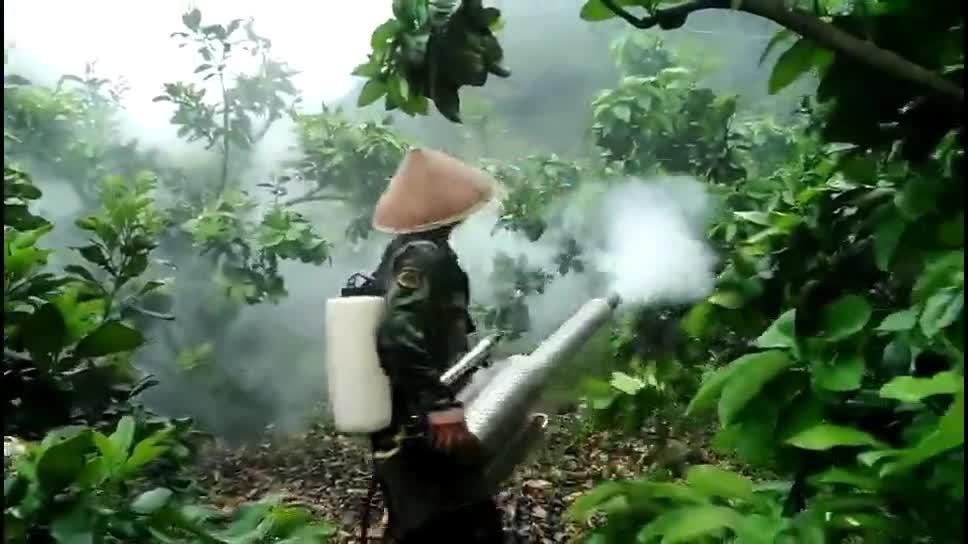 Nebelsprüher für Sprühnebel Sprühnebelgerät