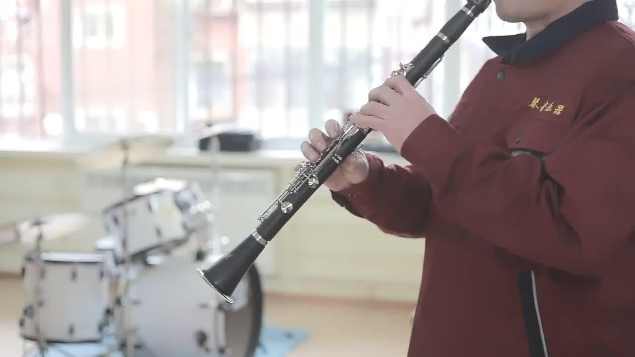 E-Klarinette / 17 Klarinette / kleine Klarinette