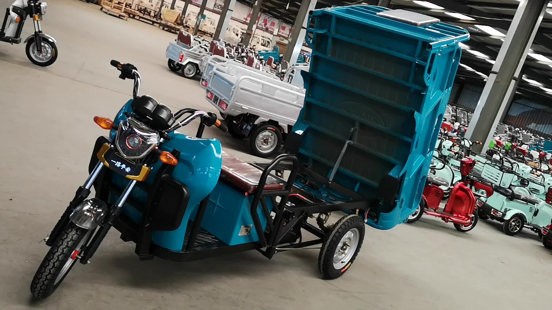 Easy Control China Factory 2019 Battery Powered 48v 800w 3 Wheeler Electric Tricycle with Carrier
