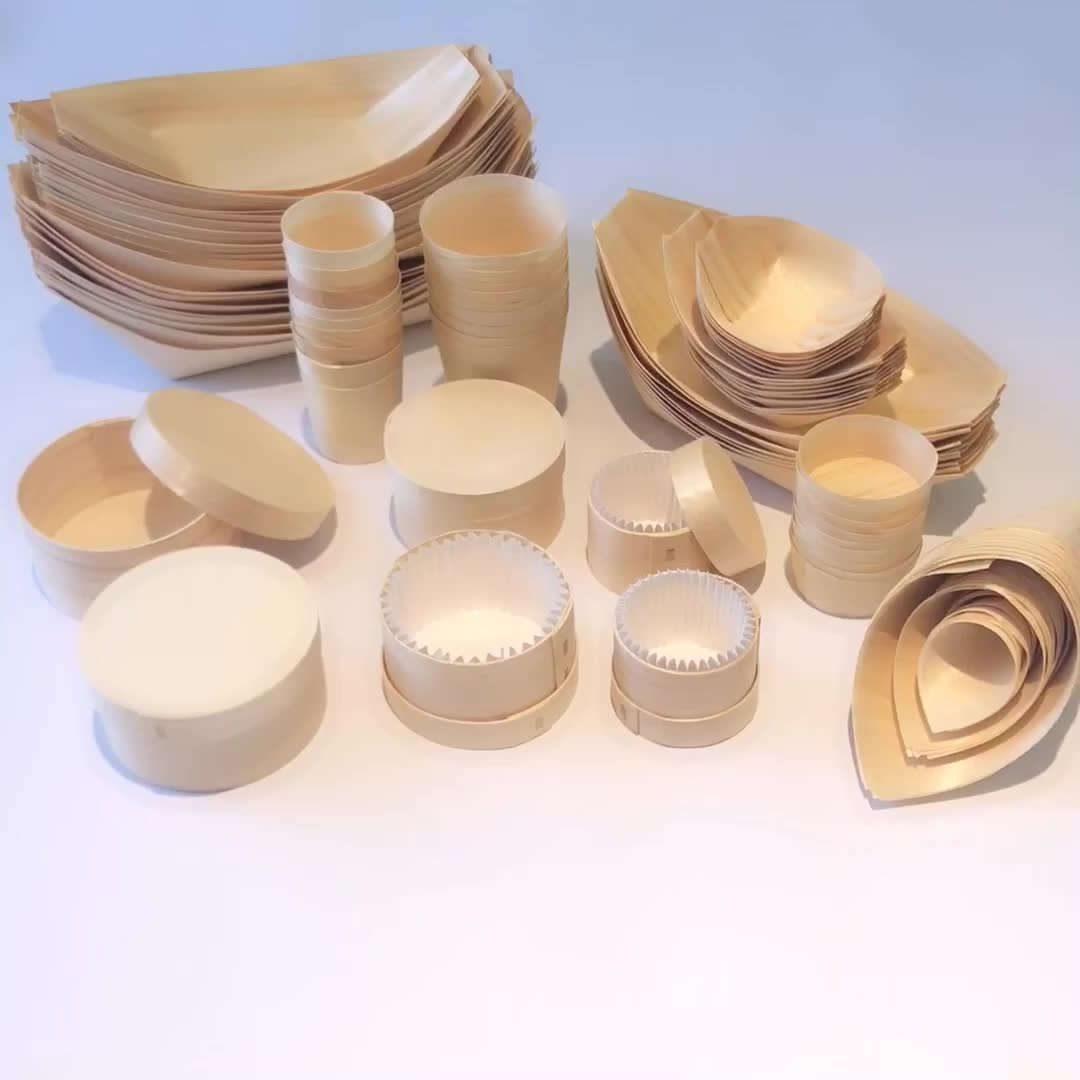 China Suppliers Bulk Disposable Wooden Sushi Boat/cone/plate