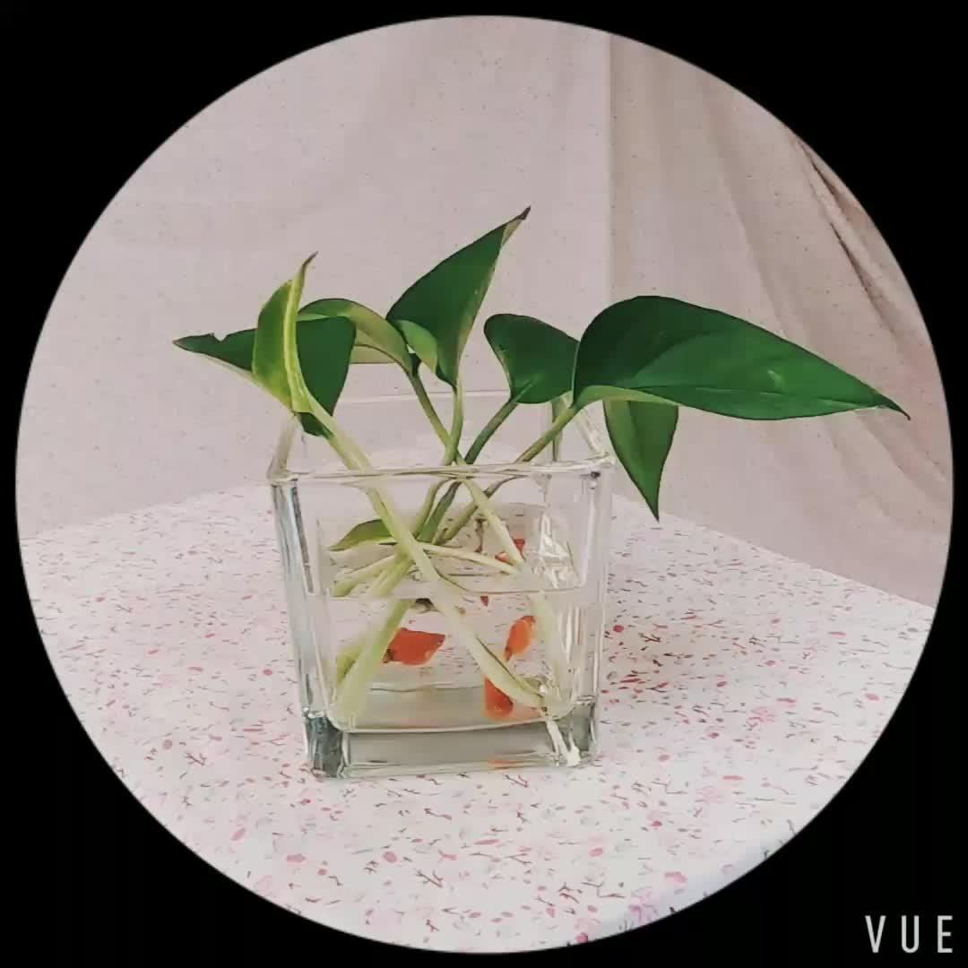 Offre Spéciale Vase En Verre Carré Cube Votive Bougeoir Pièce Maîtresse D'aquarium d'aquarium