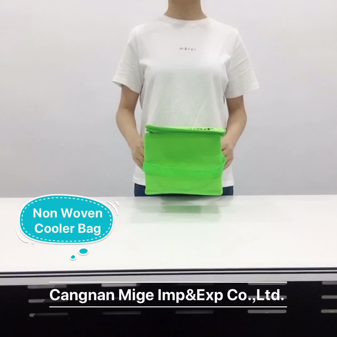Eco Friendly Bloco de Gelo Portátil Mini Fresco Garrafa de Vinho Transportadora Térmica Isolados Saco Do Refrigerador de Refrigeração