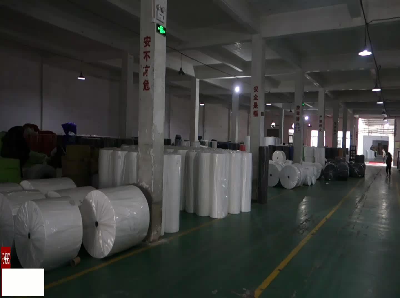 Dapoly पर्यावरण के अनुकूल चीन पीपी गैर बुना बैग यात्रा बैग