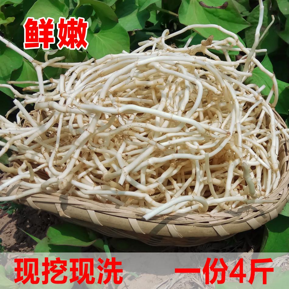 【 каждый день специальное предложение 】 ток копать свежий рыба рыбный трава корень сложить ухо корень дикий постоянно корень часть 4 кг загрузить пакет