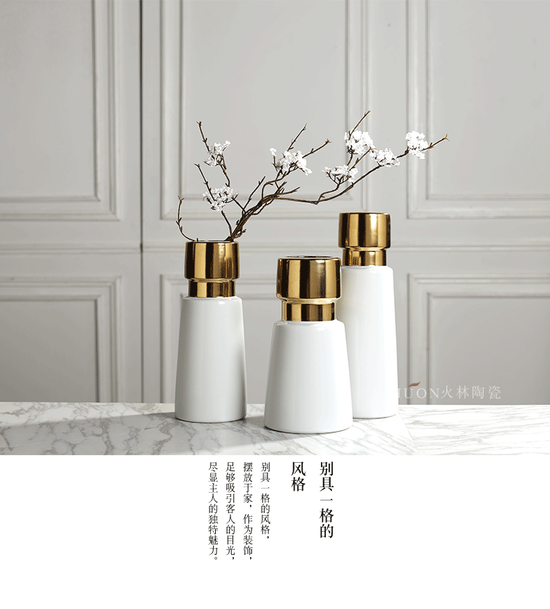 I and contracted light key-2 luxury furnishing articles creative living room TV cabinet ceramic vase of dry flower arranging Nordic flower flowers hydroponics