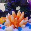 Simulation coral shell fish tank ornament aquarium ornament white coral sea bottom jewelry