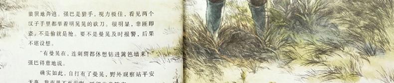 豆瓣评分9.1 沈石溪画本 全套8册 图14
