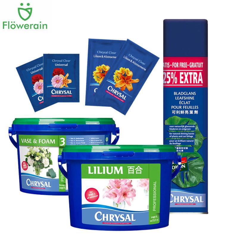 Kelixian Hà Lan Hoa dinh dưỡng Chất lỏng Hoa tươi Văn hóa Trung bình Kéo dài thời gian ra hoa Cung cấp cửa hàng hoa - Nguồn cung cấp vườn