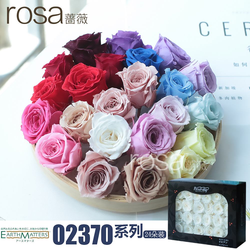 Usd 649 Rose Mini Small White Immortal Rose Flowers Japanese Land