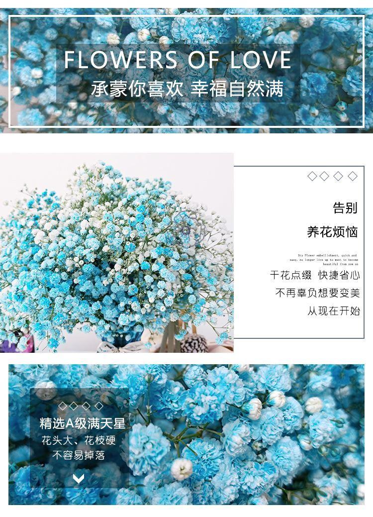 中國代購|中國批發-ibuy99|家里摆设的花满天星客厅小束梳妆台摆件花束电视机旁边的摆设干花