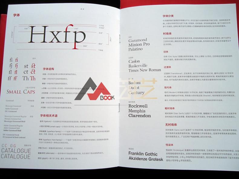 今日版式 简体中文版 平面设计中的图文编排 书籍报纸杂志海报宣传册设计法则与案例分析 平面广告设计 书籍详细照片
