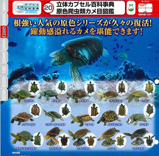 Tomy Diomei Genuine Tips for Turtles Turtles Turtle Decoration Spot