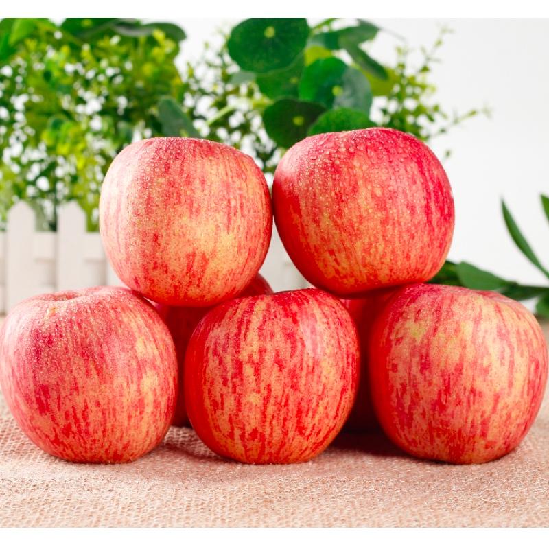 3斤烟台苹果水果新鲜天然种植