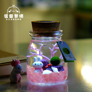 marimo happiness seaweed ball micro landscape ecological bottle glass bottle mini potted creative gift hydroponic plant