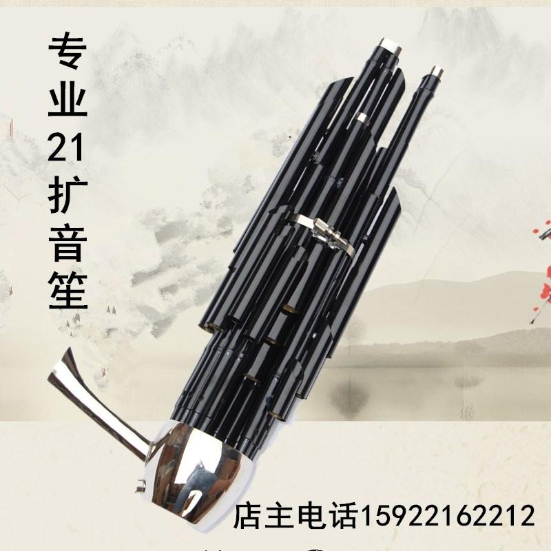 21 весна профессиональный 笙 笙 笙 21 весна профессиональное звукоусиление 笙 национальный инструмент духового инструмента для