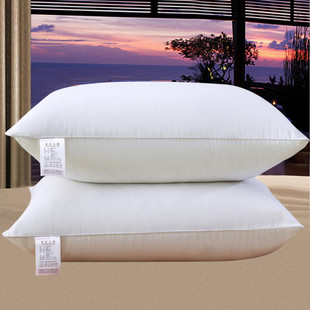 [the second piece is 0 yuan] a pair of down pillows in Hotel