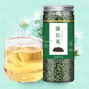 野生特级长白山蒲公英茶罐装