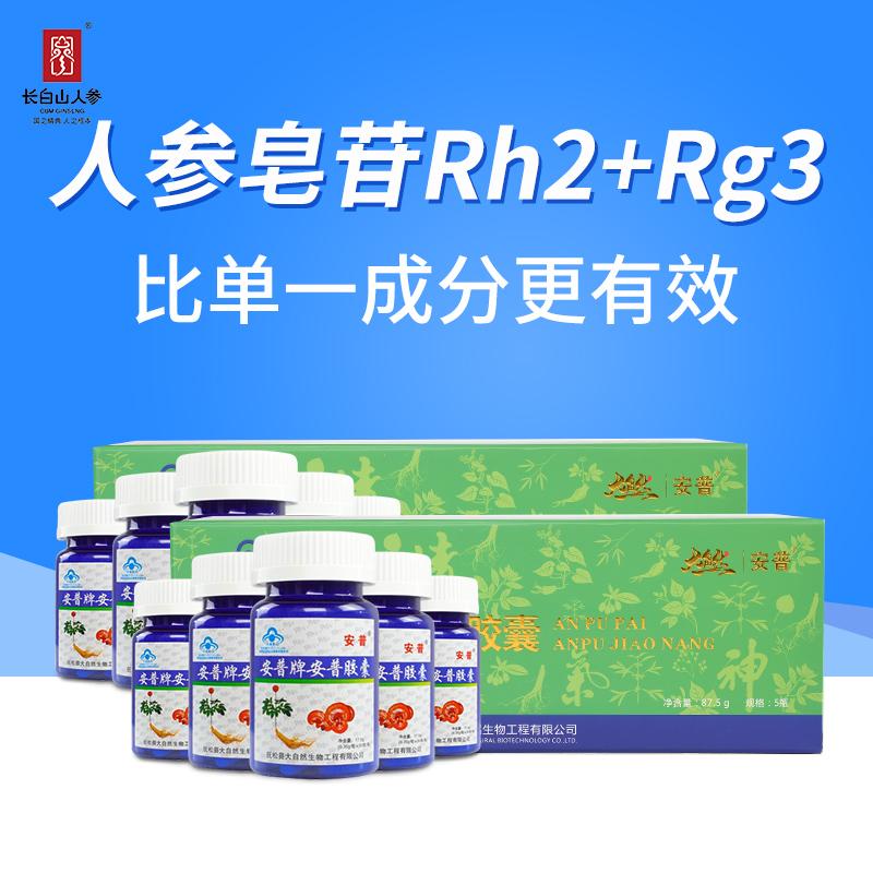 安普人参多糖皂苷rh2rg3灵芝胶囊红景天苷50粒/瓶*10瓶