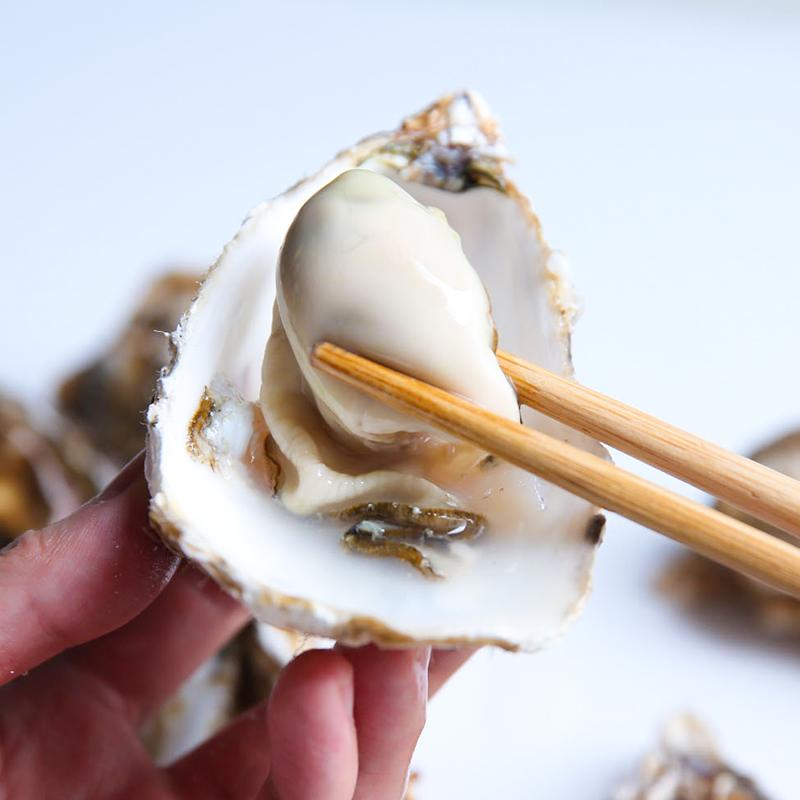乳山生蚝�鲜活5斤海鲜水产特大牡蛎海蛎子新鲜超大大贝壳※带壳10斤