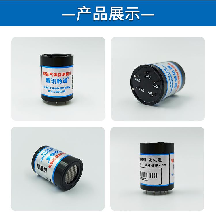 电化学硫化氢气体传感器