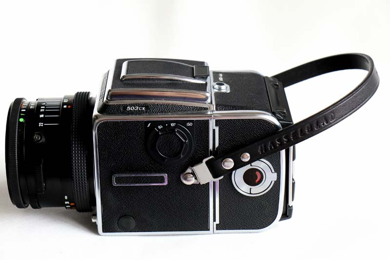 Hasselblad Leather Full Length Camera Strap BRAND NEW 500cm 501cm 503cw 503cx