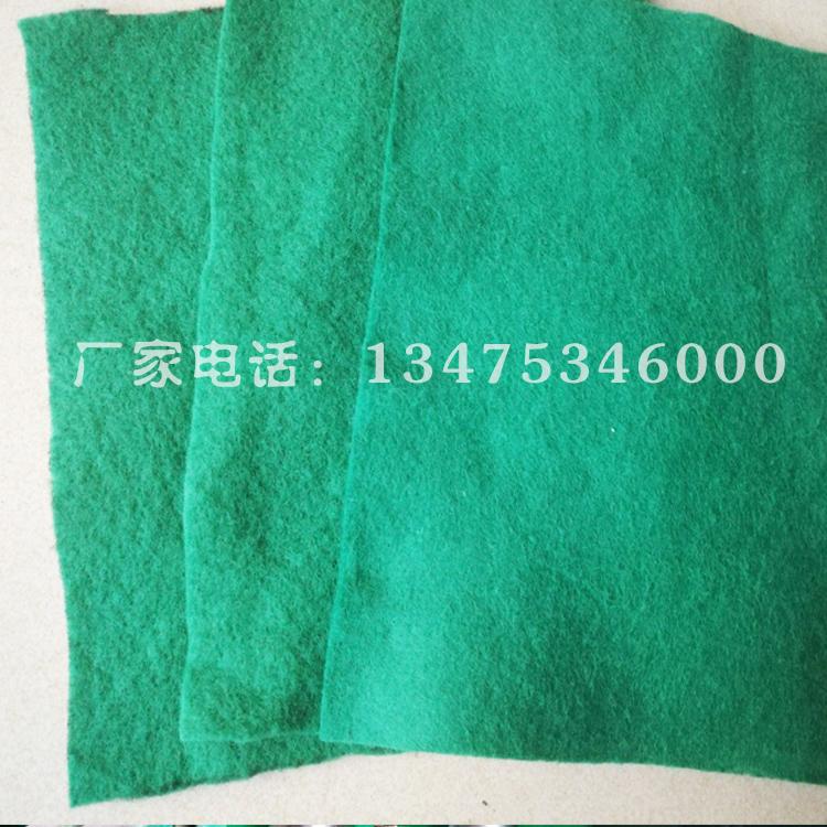 400克绿色土工布图片九