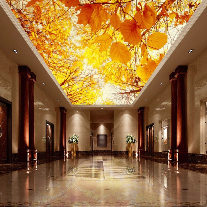 Shanghai Uv Soft Film Ceiling Decoration Decorative Light Construction Card Cloth Ultra Thin Box