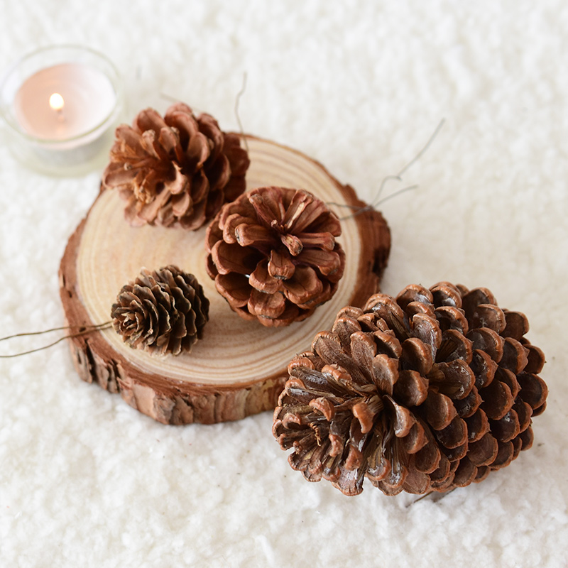 Usd 4 39 Noki Natural Pine Ta Ethem Decoration Handmade Diy Dried Flower Decoration Christmas Decorations Shooting Props Wholesale From China Online Shopping Buy Asian Products Online From The Best Shoping