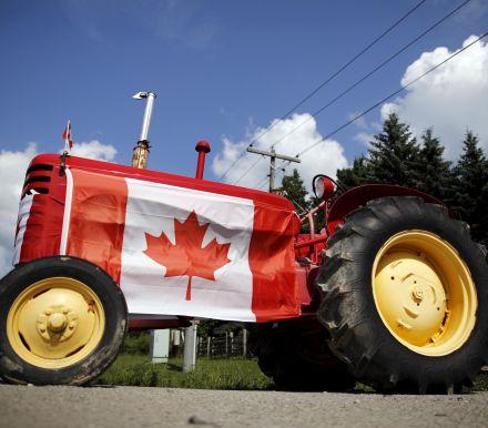加拿大央行将公布1月利率决议,并发表货币政策声明,美银美林、野村证券...