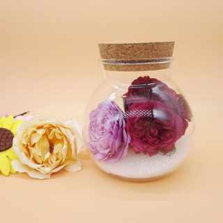 Micro landscape cork stopper round glass bottle pineapple bottle jar dried flower creative gift immortal flower preservation sealed jar