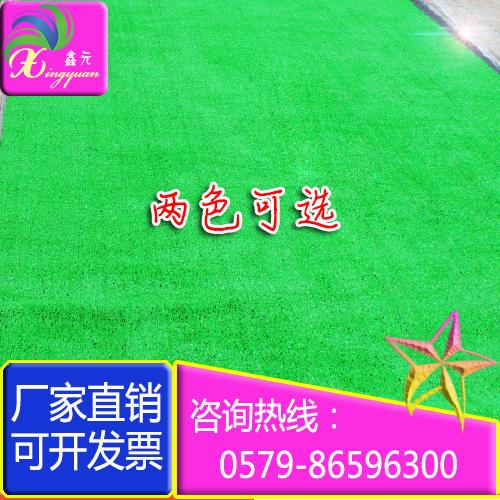 2米4米加宽休闲仿真草坪地毯室内外人造草坪草皮幼儿园假草阳台