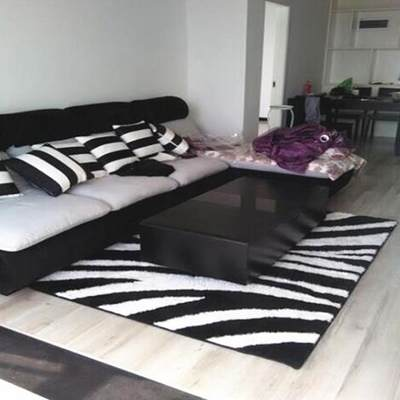 Custom zebra pattern living room carpet bedroom entrance wedding non-slip carpet corridor dirt resistant bedside carpet machine washable