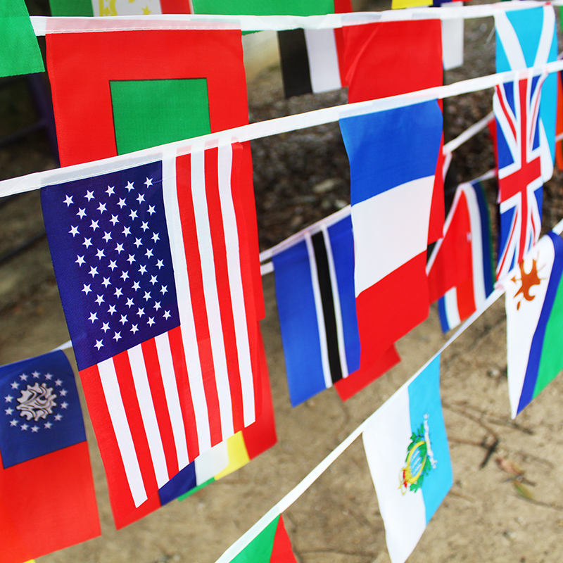 No  8 50 national flags small flags of the world different foreign flags  custom flag flag flag flag flag